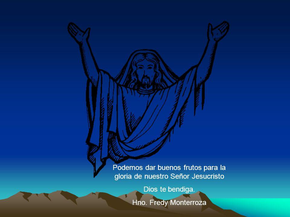 Podemos dar buenos frutos para la gloria de nuestro Señor Jesucristo
