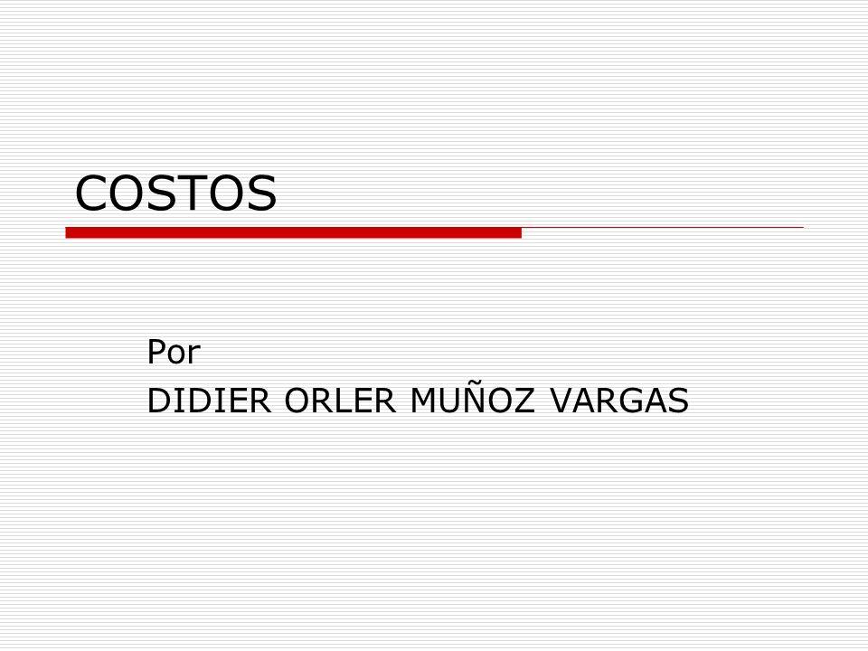 Por DIDIER ORLER MUÑOZ VARGAS