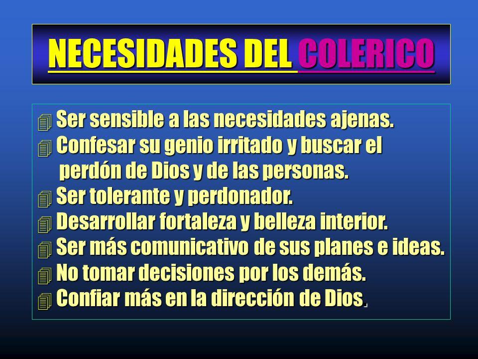 NECESIDADES DEL COLERICO