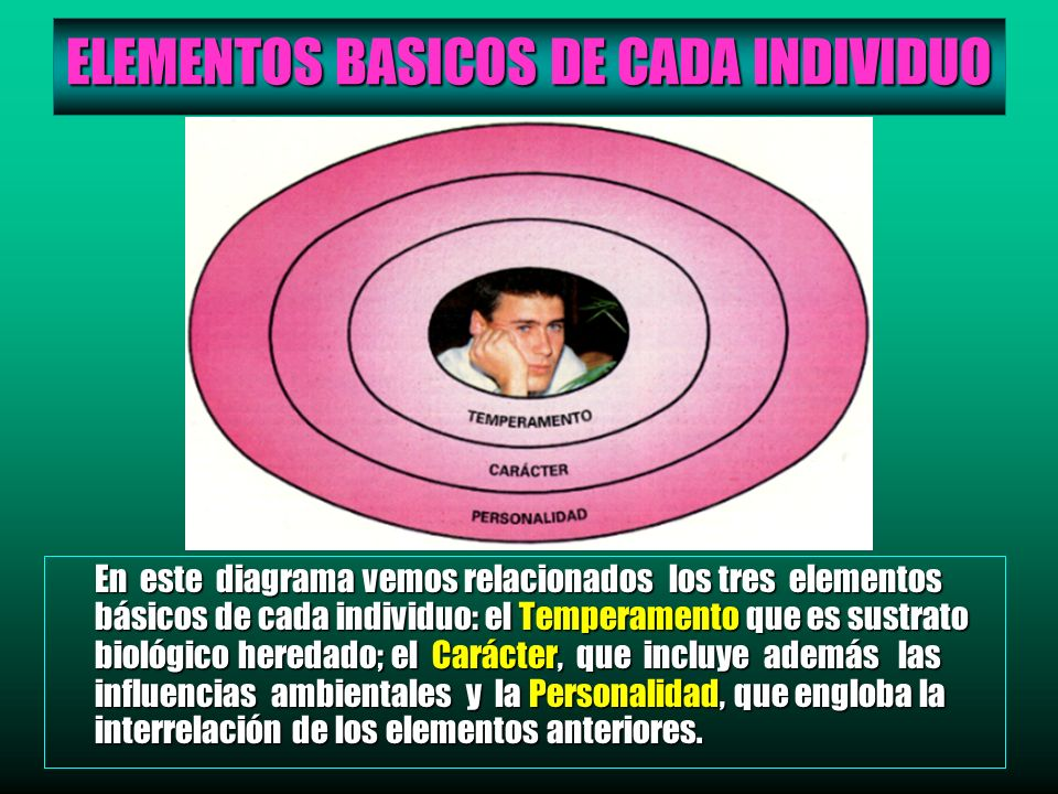 ELEMENTOS BASICOS DE CADA INDIVIDUO