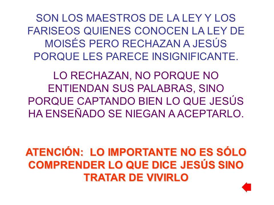 SON LOS MAESTROS DE LA LEY Y LOS FARISEOS QUIENES CONOCEN LA LEY DE MOISÉS PERO RECHAZAN A JESÚS PORQUE LES PARECE INSIGNIFICANTE.