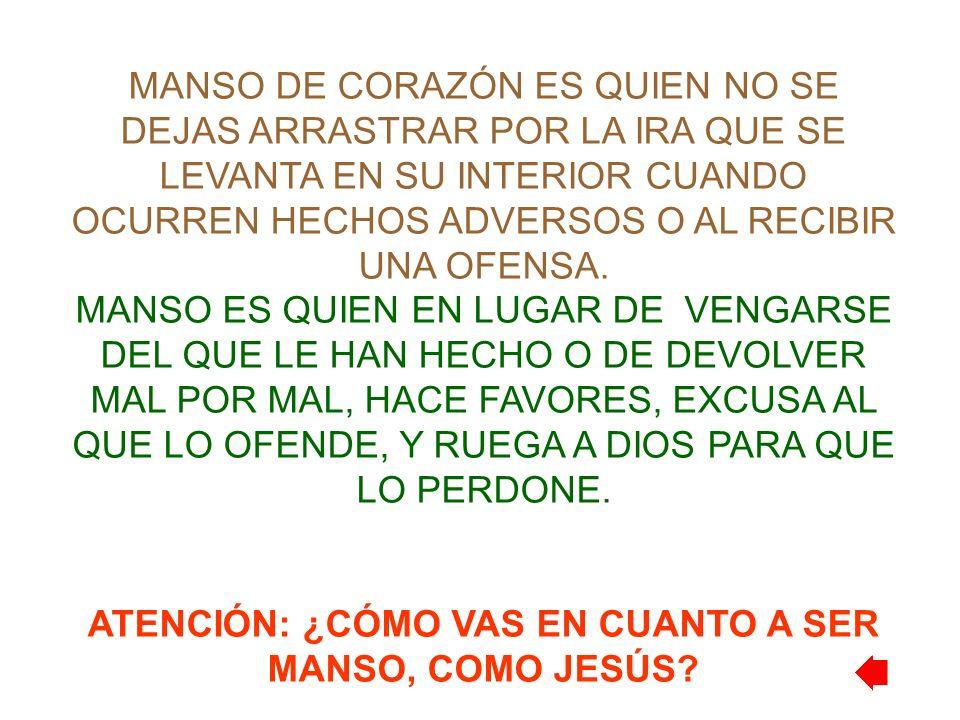 ATENCIÓN: ¿CÓMO VAS EN CUANTO A SER MANSO, COMO JESÚS