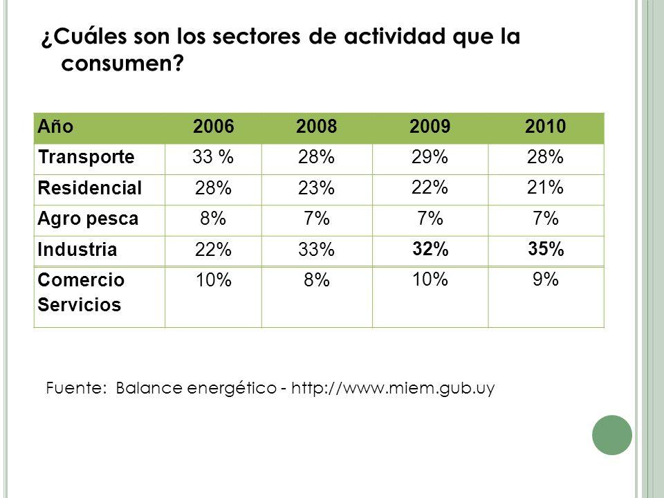 ¿Cuáles son los sectores de actividad que la consumen