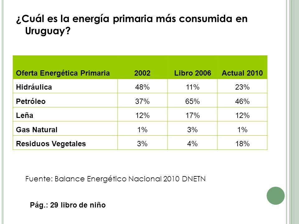 ¿Cuál es la energía primaria más consumida en Uruguay