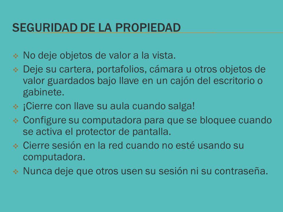 SEGURIDAD DE LA PROPIEDAD