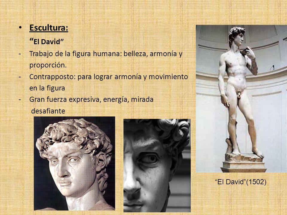 Escultura: El David Trabajo de la figura humana: belleza, armonía y