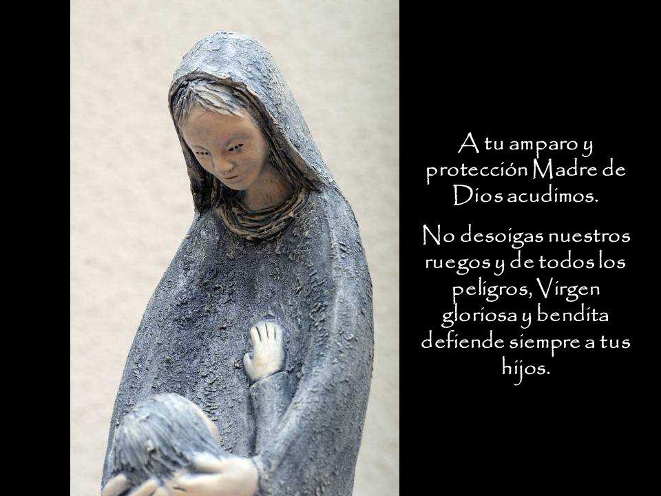 A tu amparo y protección Madre de Dios acudimos.