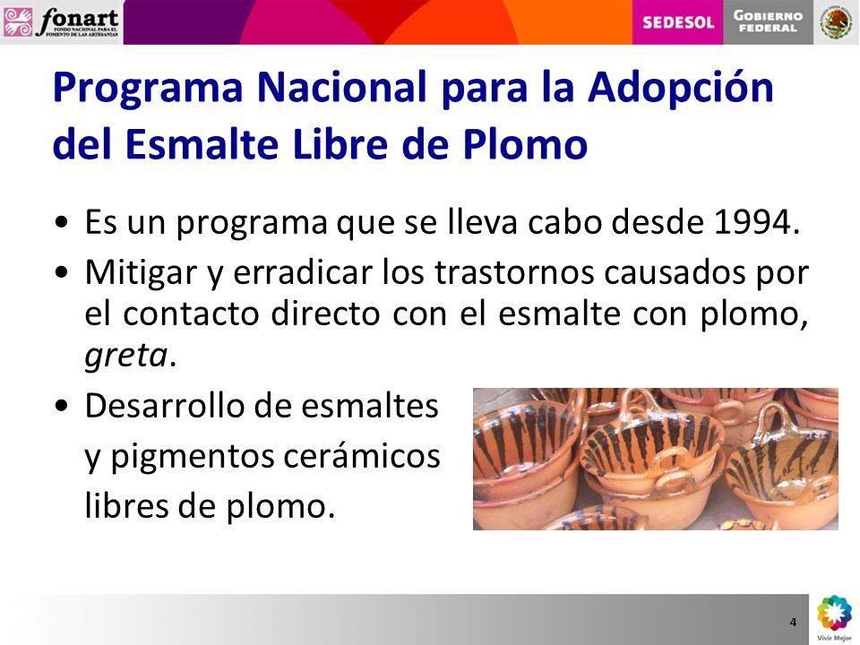 Programa Nacional para la Adopción del Esmalte Libre de Plomo