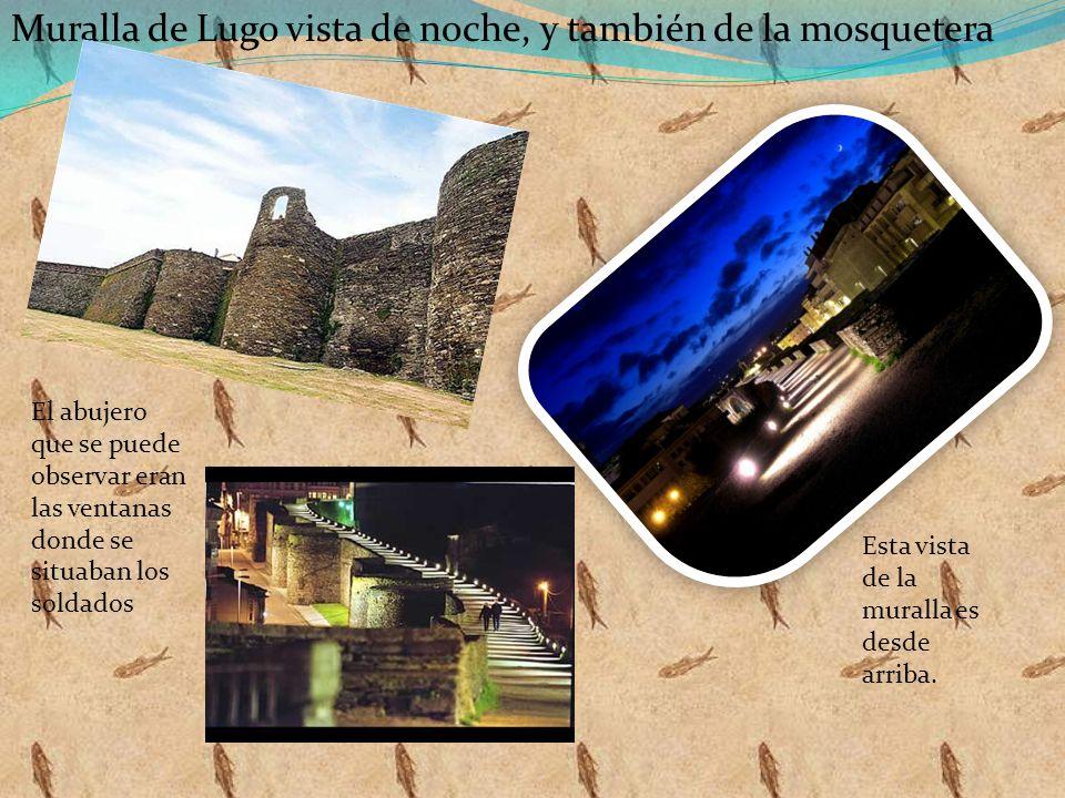 Muralla de Lugo vista de noche, y también de la mosquetera