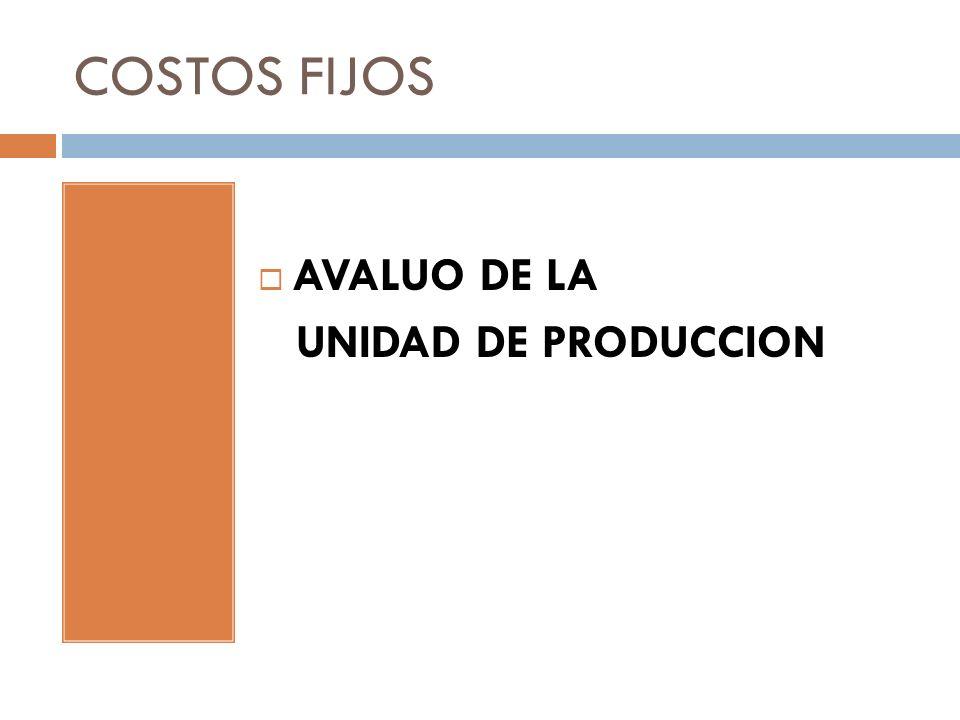 COSTOS FIJOS AVALUO DE LA UNIDAD DE PRODUCCION