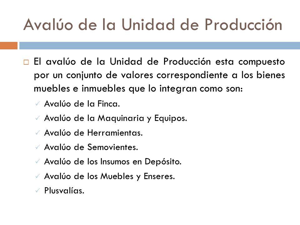Avalúo de la Unidad de Producción