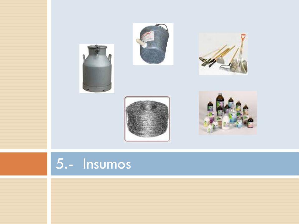 5.- Insumos