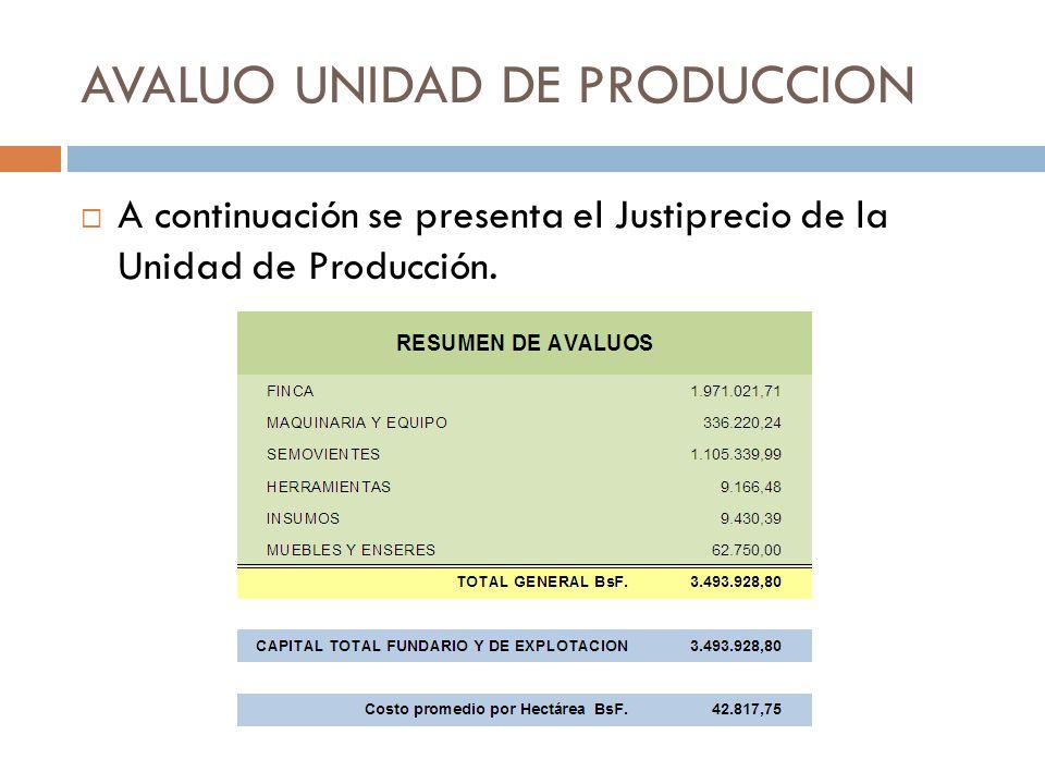 AVALUO UNIDAD DE PRODUCCION
