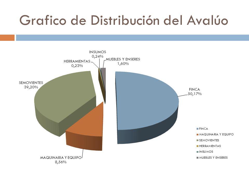 Grafico de Distribución del Avalúo