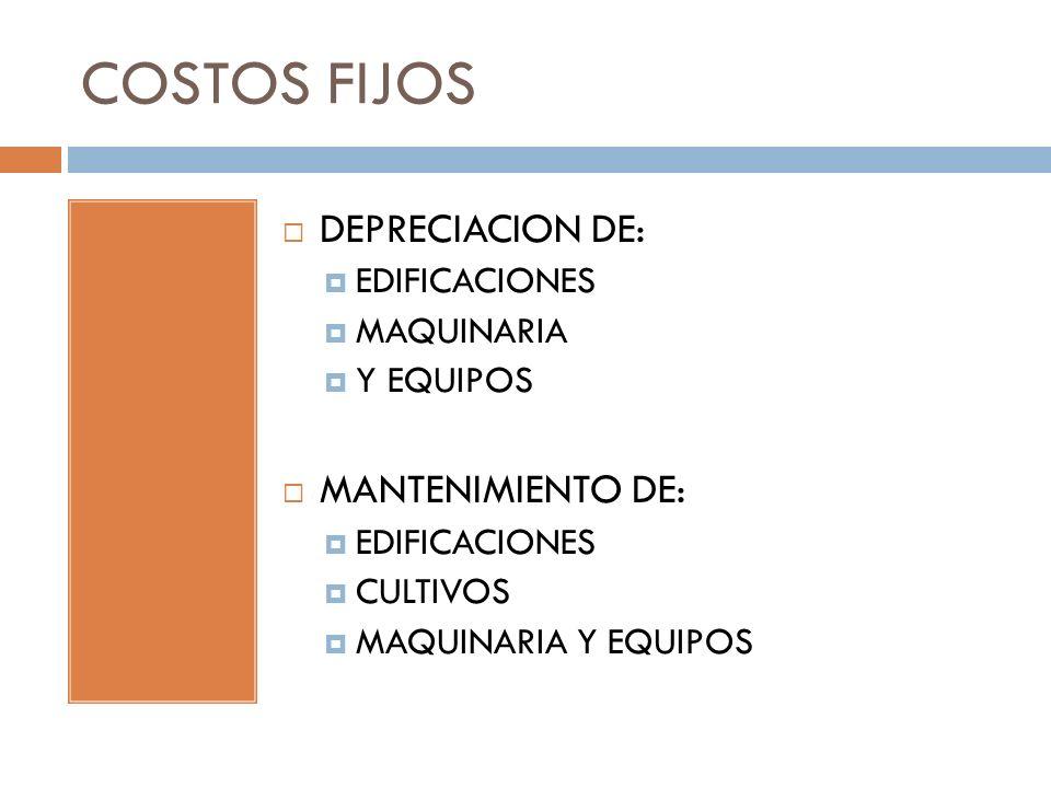 COSTOS FIJOS DEPRECIACION DE: MANTENIMIENTO DE: EDIFICACIONES