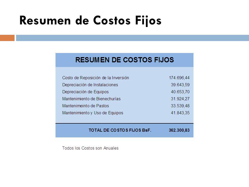 Resumen de Costos Fijos