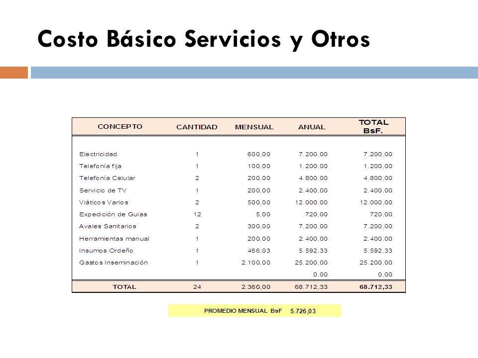 Costo Básico Servicios y Otros