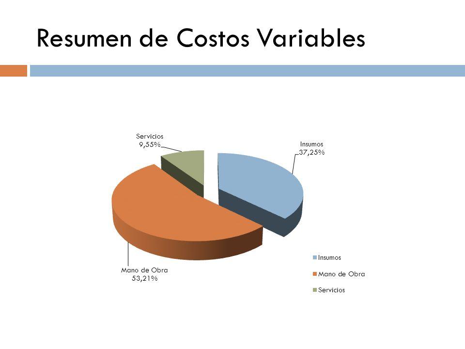 Resumen de Costos Variables