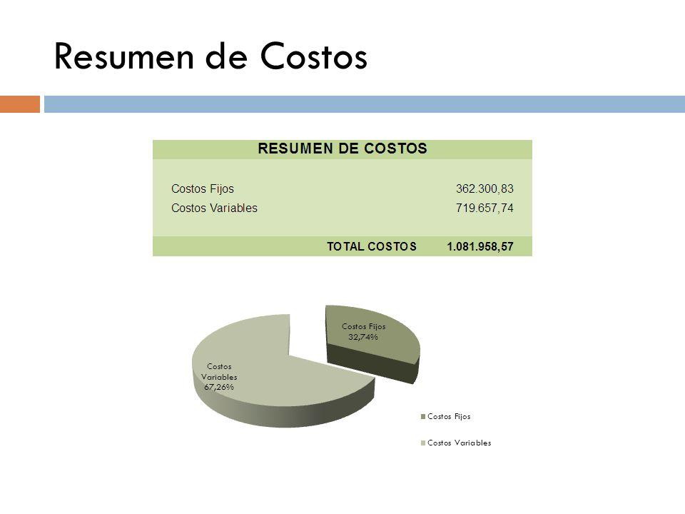 Resumen de Costos