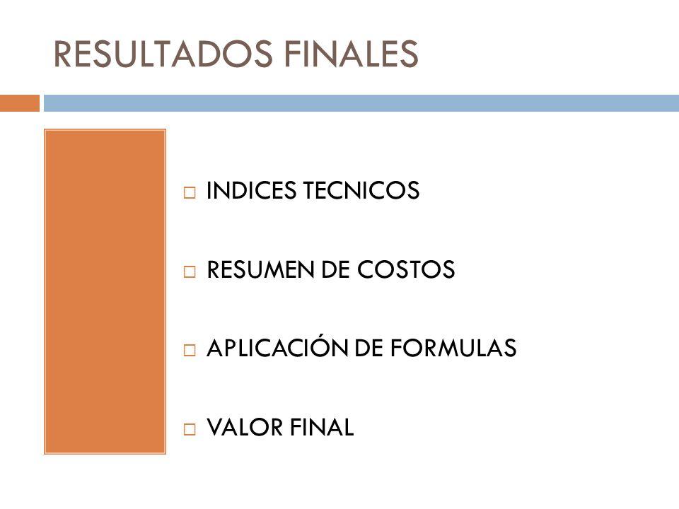RESULTADOS FINALES INDICES TECNICOS RESUMEN DE COSTOS