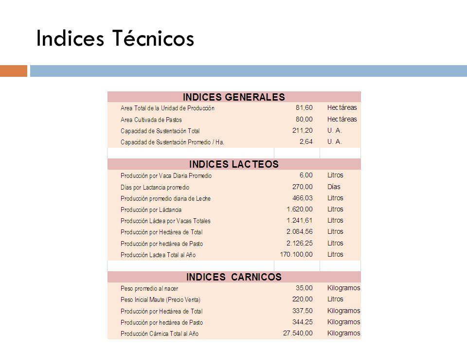 Indices Técnicos
