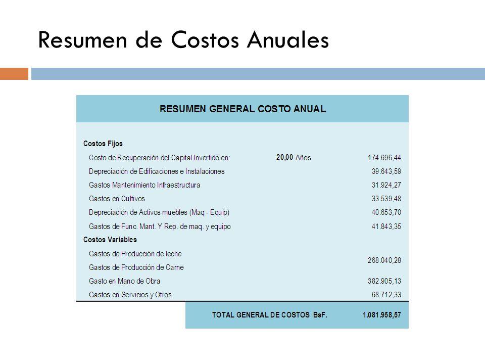 Resumen de Costos Anuales