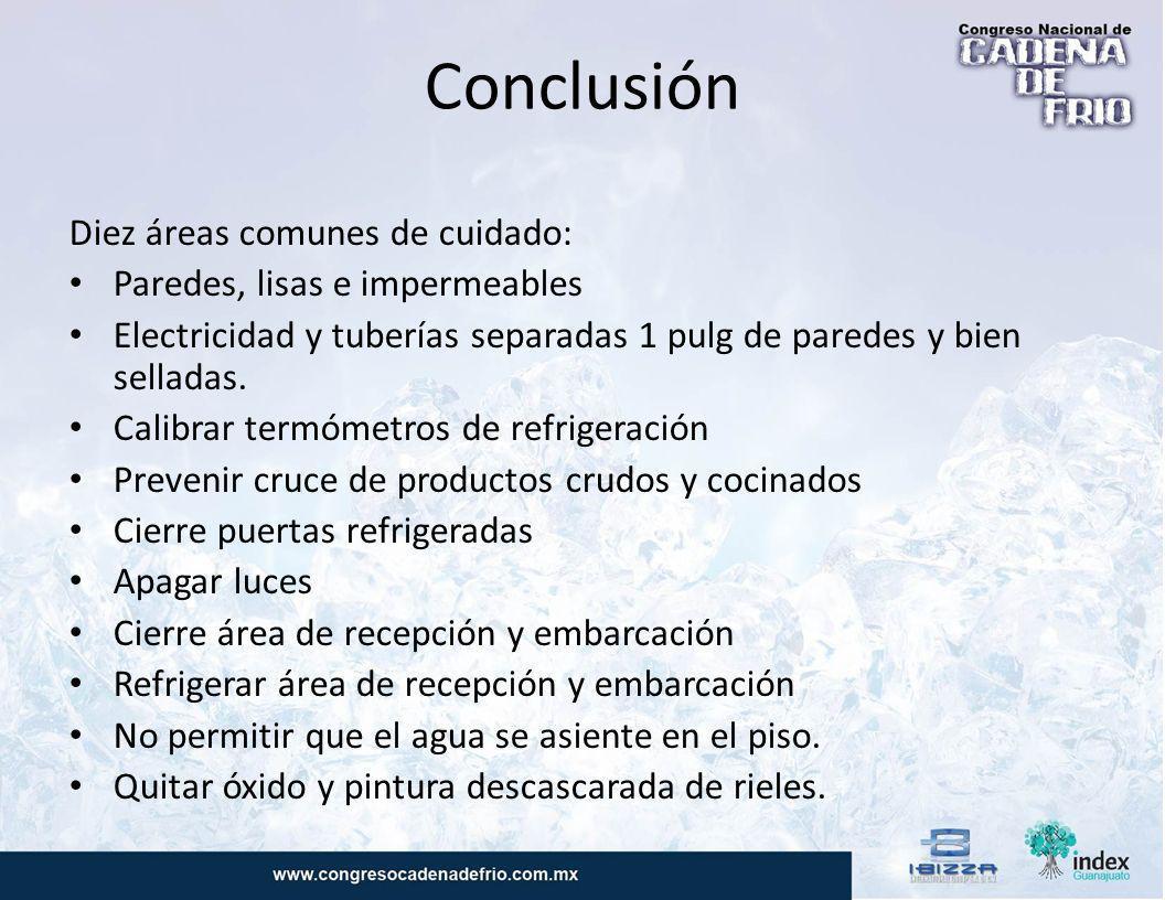 Conclusión Diez áreas comunes de cuidado: