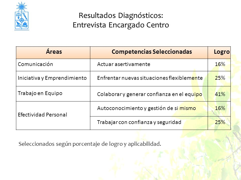 Resultados Diagnósticos: Entrevista Encargado Centro