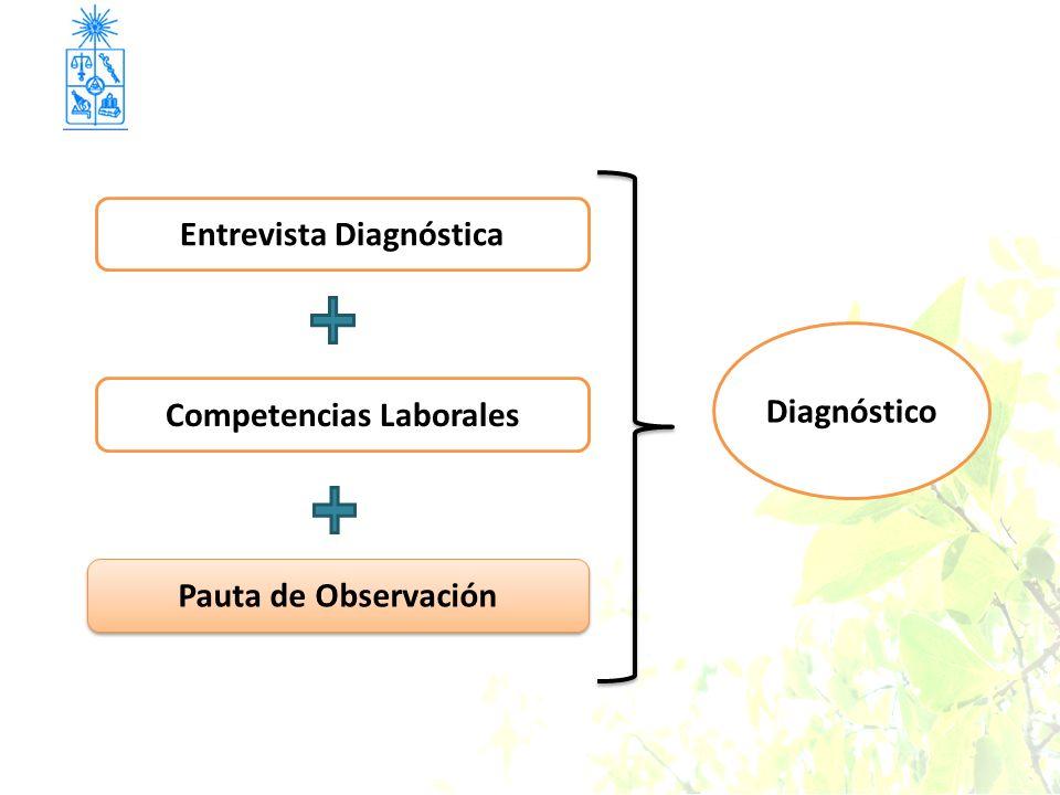 Entrevista Diagnóstica Competencias Laborales
