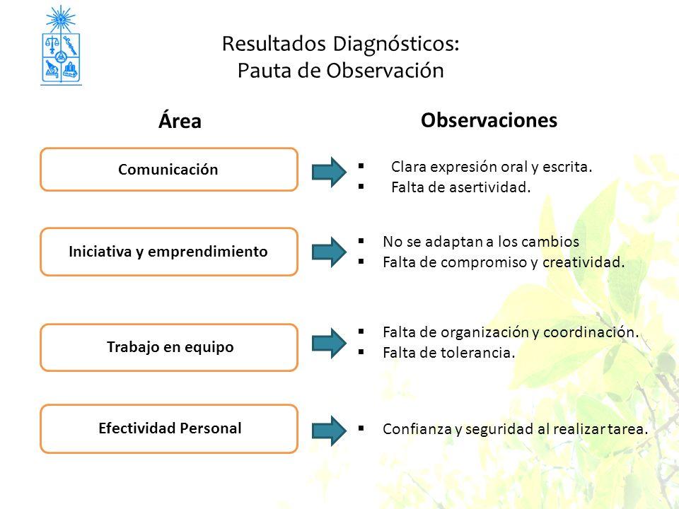 Resultados Diagnósticos: Pauta de Observación