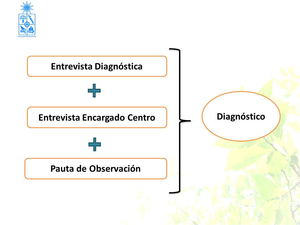 Entrevista Diagnóstica Entrevista Encargado Centro