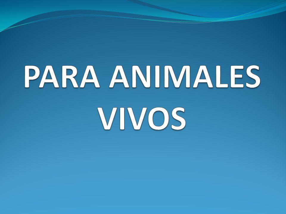 PARA ANIMALES VIVOS