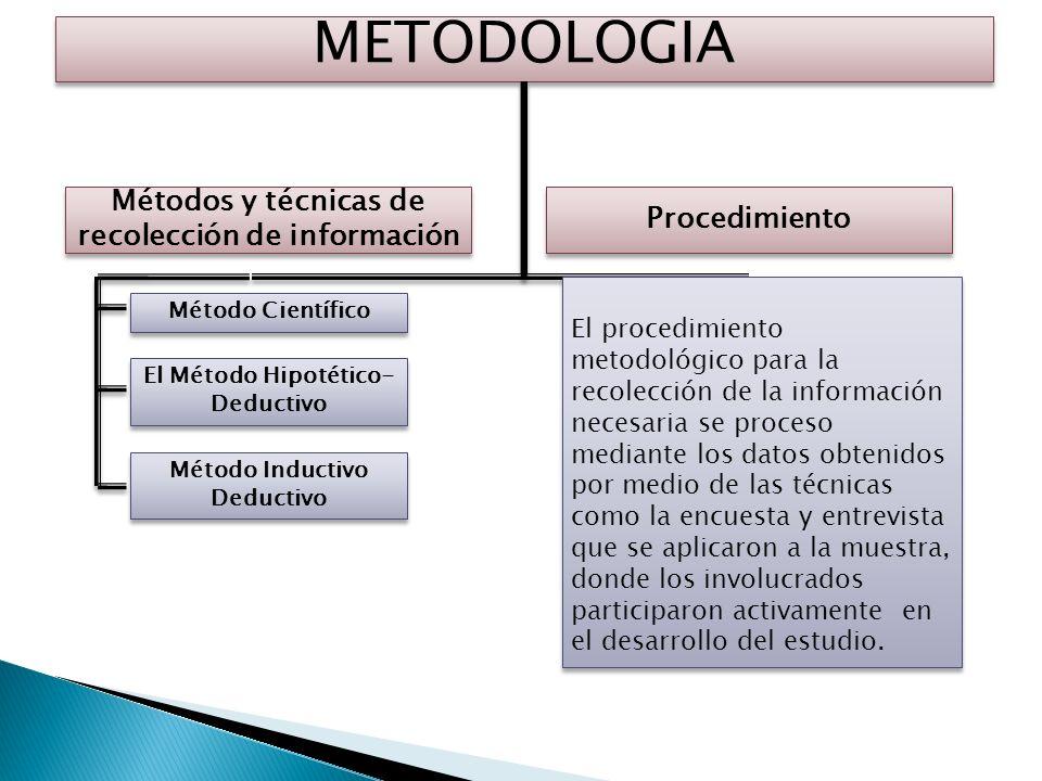 METODOLOGIA Métodos y técnicas de recolección de información