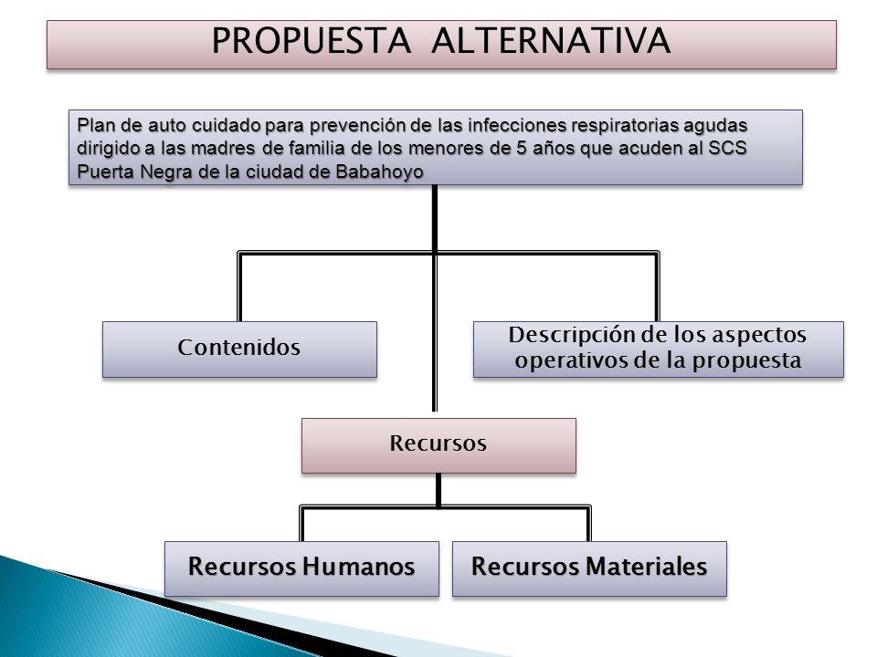 Descripción de los aspectos operativos de la propuesta