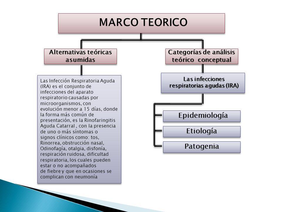 MARCO TEORICO Epidemiología Etiología Patogenia