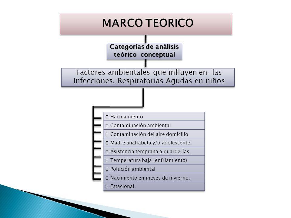 Categorías de análisis teórico conceptual
