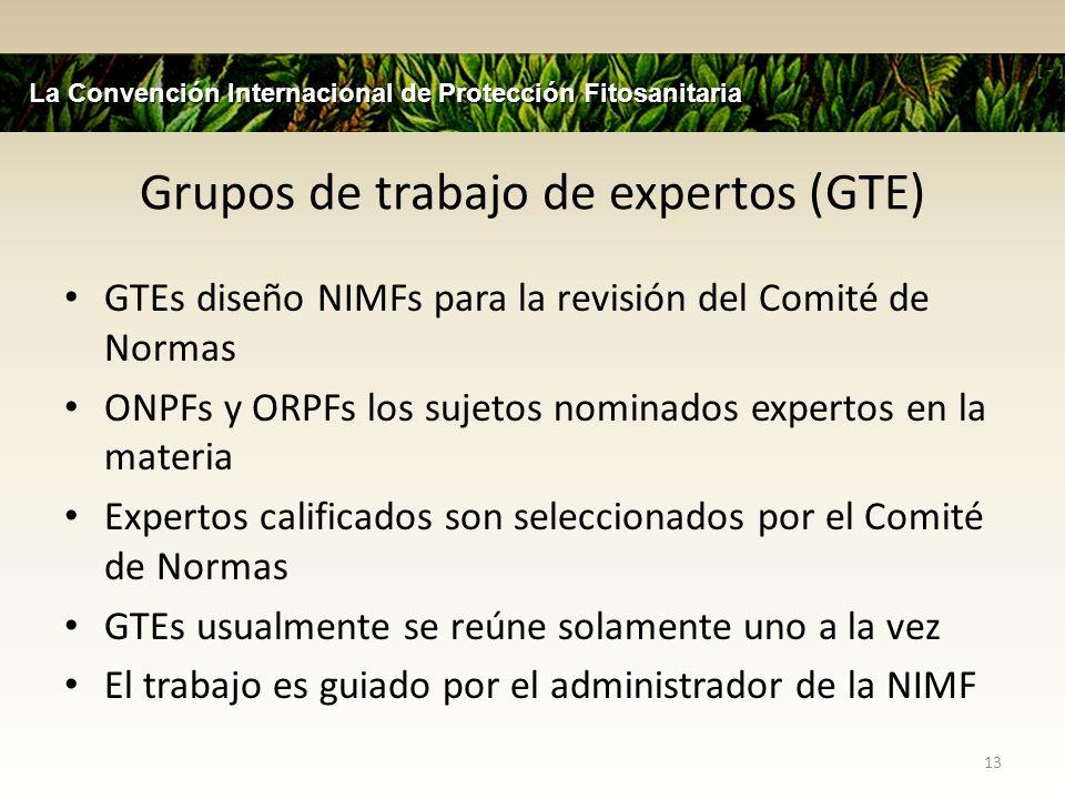 Grupos de trabajo de expertos (GTE)