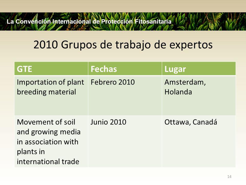 2010 Grupos de trabajo de expertos