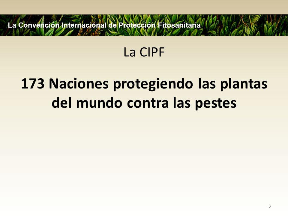 173 Naciones protegiendo las plantas del mundo contra las pestes