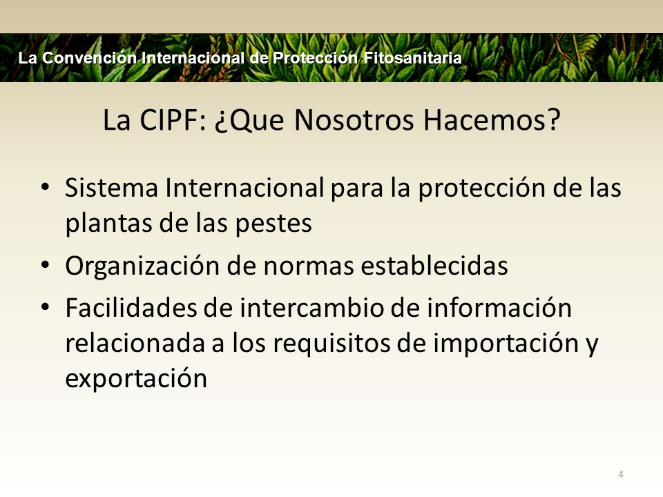 La CIPF: ¿Que Nosotros Hacemos