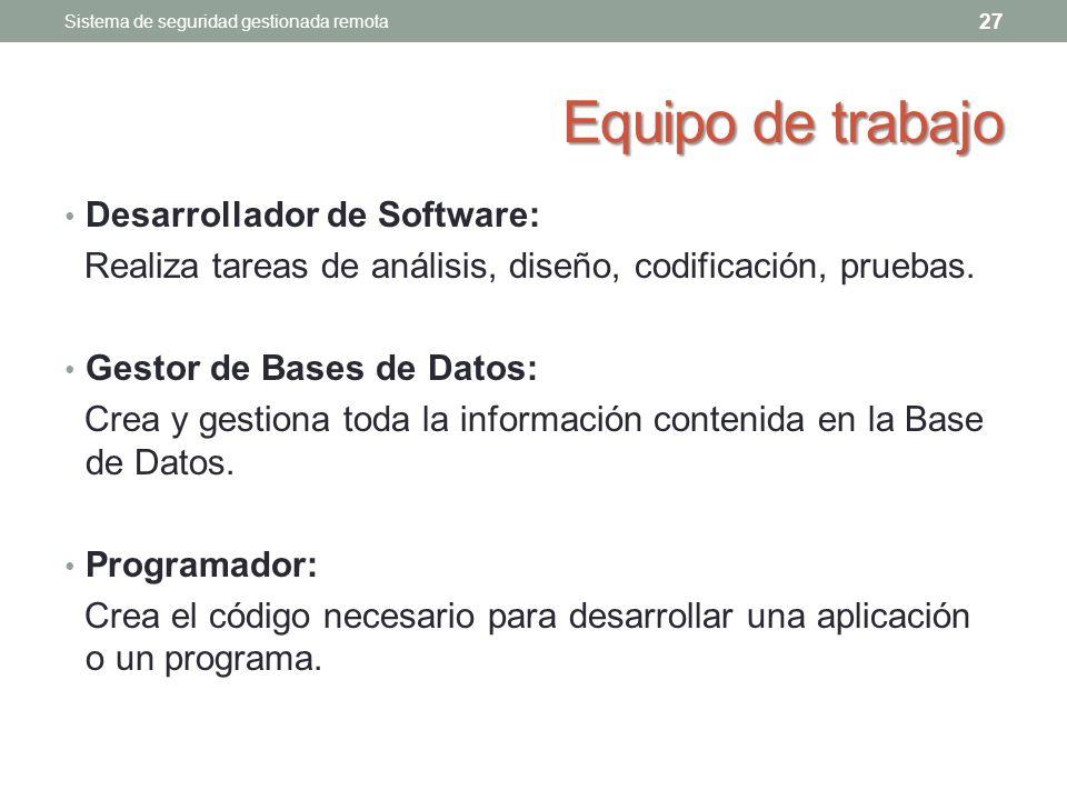 Equipo de trabajo Desarrollador de Software: