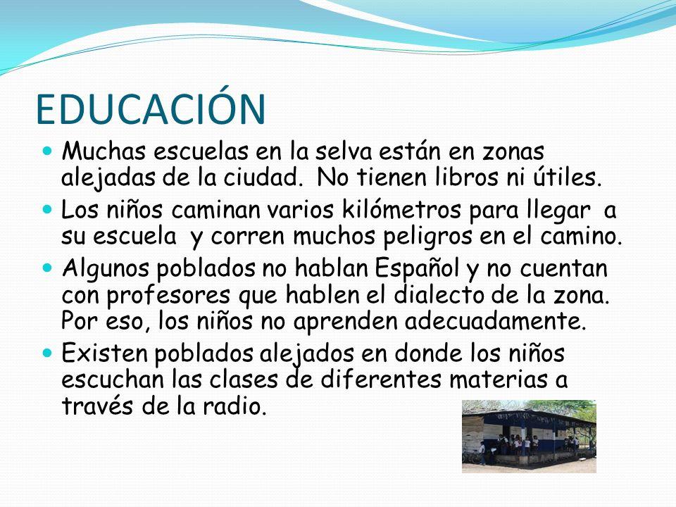 EDUCACIÓNMuchas escuelas en la selva están en zonas alejadas de la ciudad. No tienen libros ni útiles.