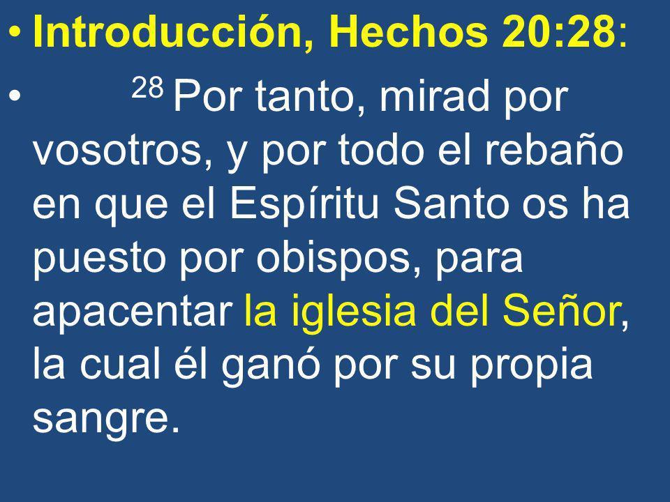 Introducción, Hechos 20:28:
