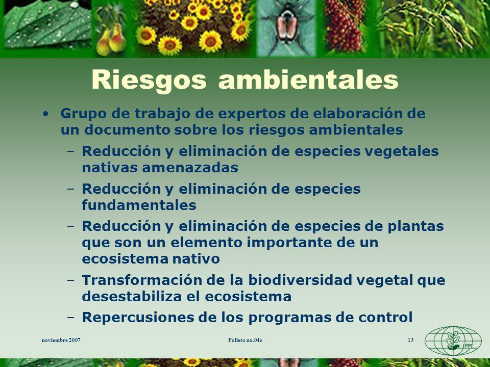 Riesgos ambientales Grupo de trabajo de expertos de elaboración de un documento sobre los riesgos ambientales.
