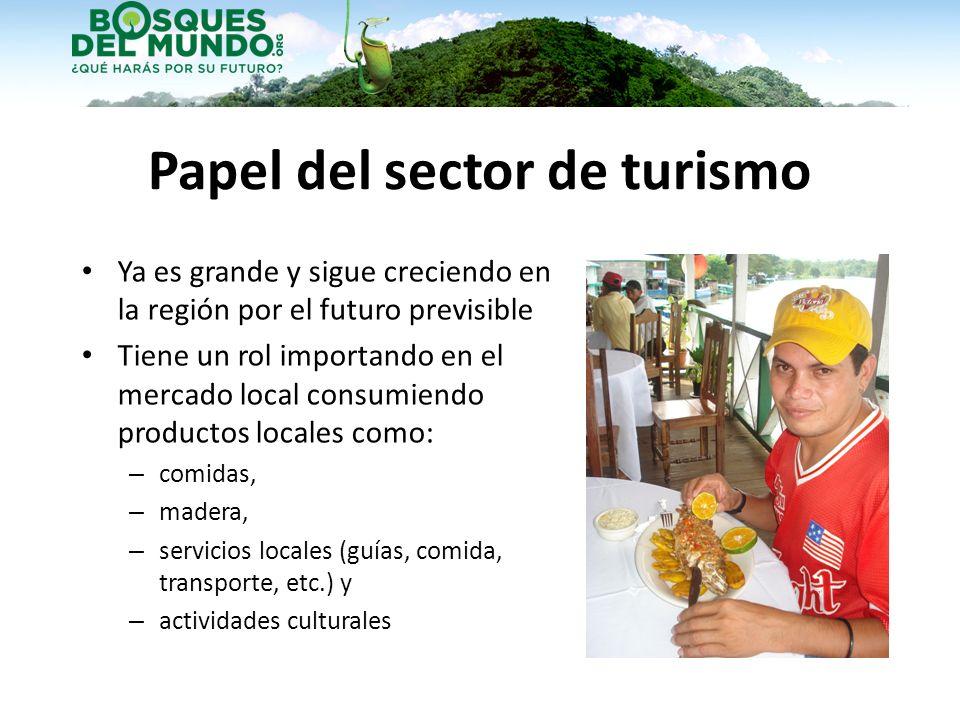 Papel del sector de turismo