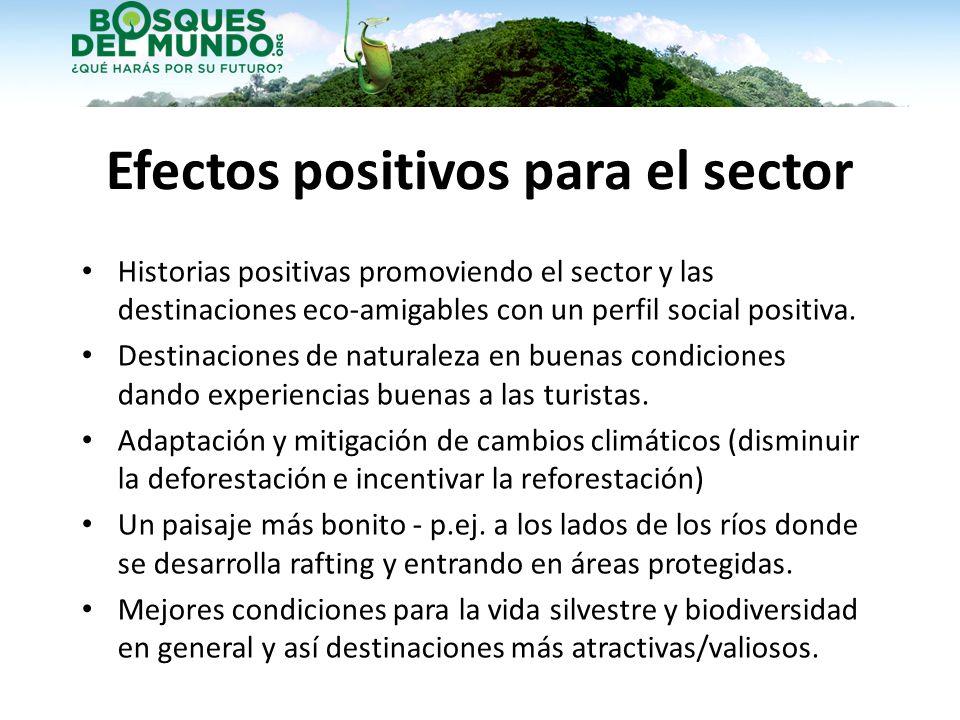 Efectos positivos para el sector