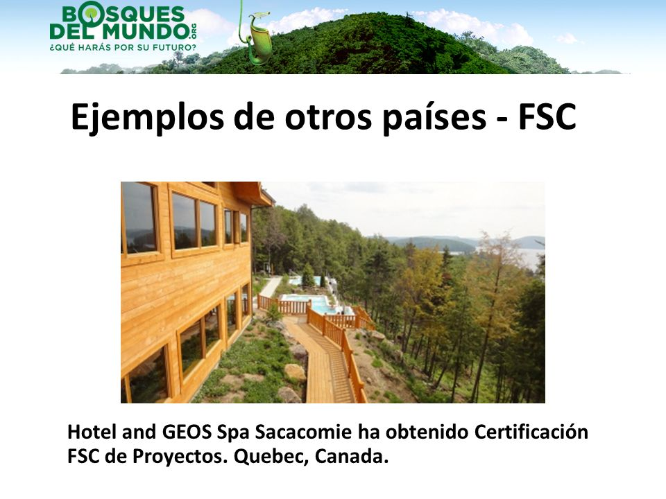 Ejemplos de otros países - FSC