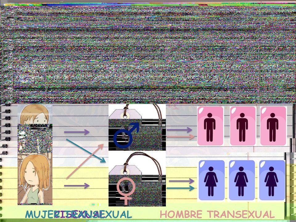 Hay personas que nacen siendo TRANSEXUALES ¿Con quién me identifico