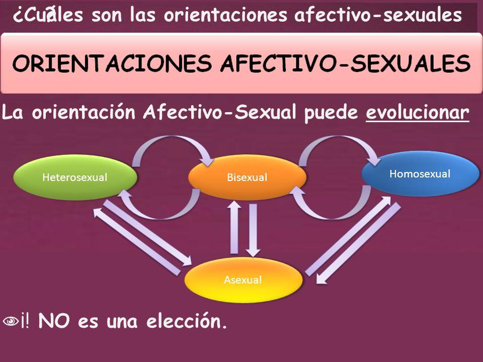 ¿ Cuáles son las orientaciones afectivo-sexuales