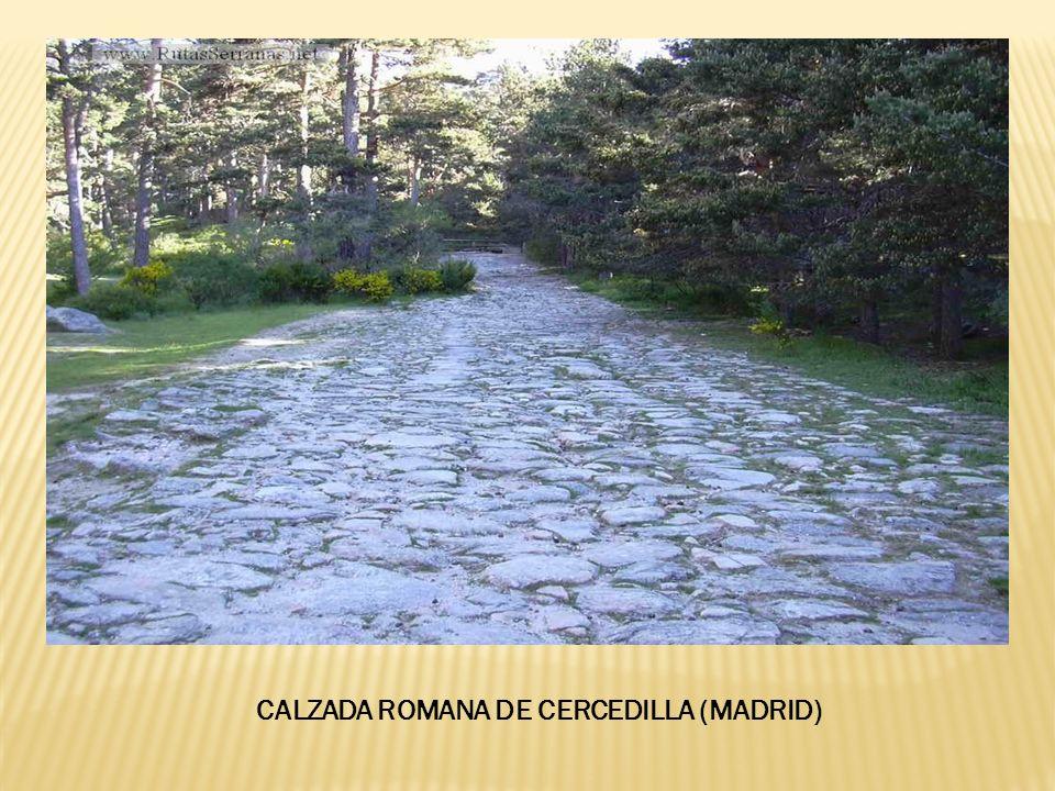 CALZADA ROMANA DE CERCEDILLA (MADRID)